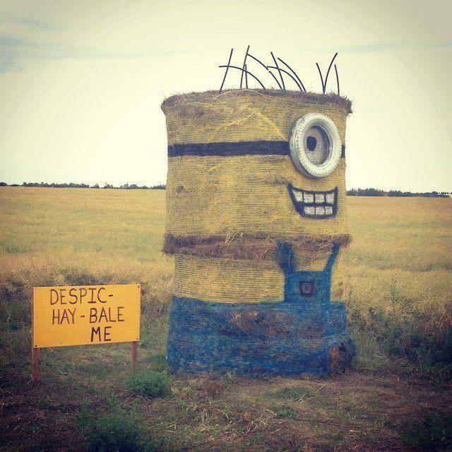 A happy hay bail Minion