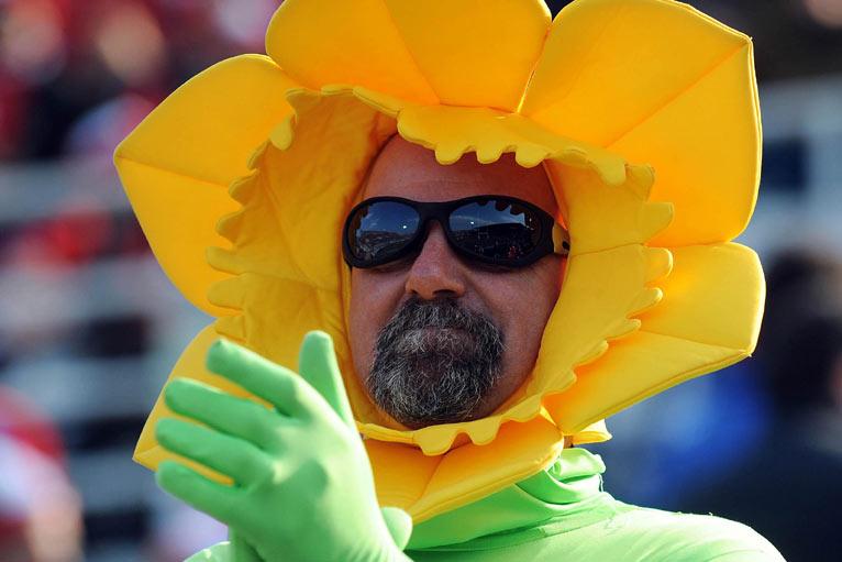 Wales fan daffodil