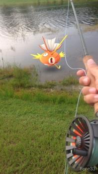 magikarp-fishing